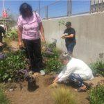 Inauguración Parque Esperanza de vida 4