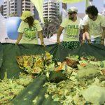 Limpieza de Plasticos en Antofagasta