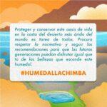 humedal8