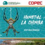 humedal9